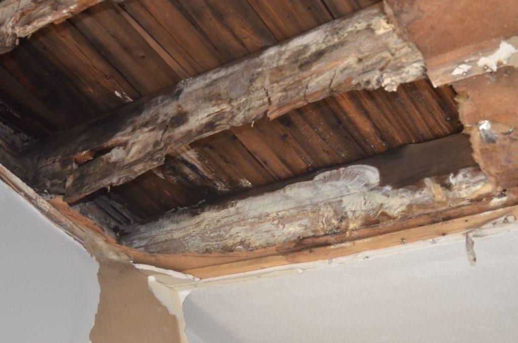 Pourriture de la structure du bois du toit, vice caché découvert.